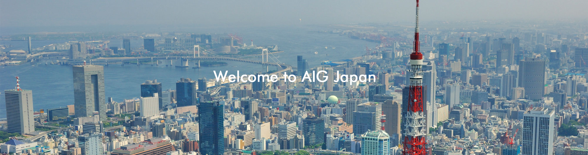 Welcome to AIG Japan
